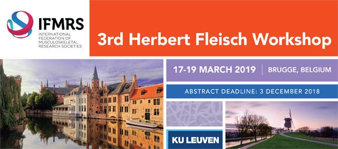 Herbert Fleisch Workshop, 17-19 March 2019, Brugge